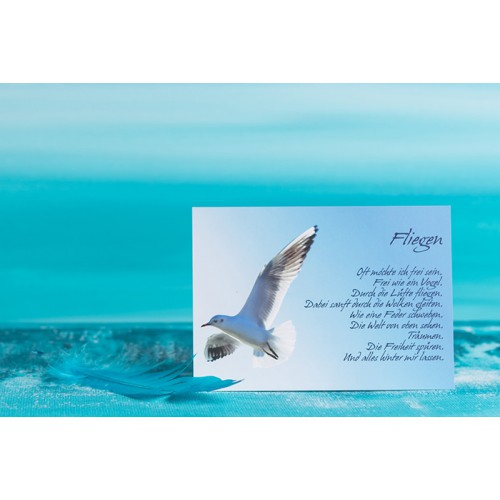 "Postkarte ""Fliegen"""